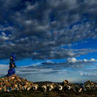 Veronique_OTTE_MONGOLIE 1621