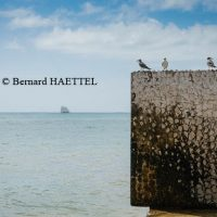 copyright_Bernard_Haettel_004